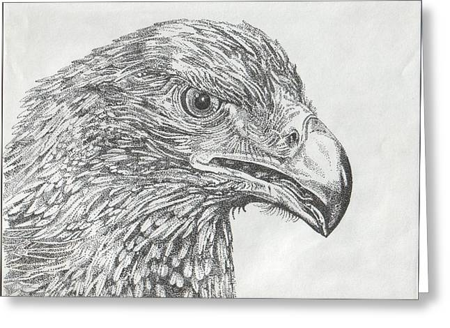 Wedgetail Eagle Greeting Card by Leonie Bell