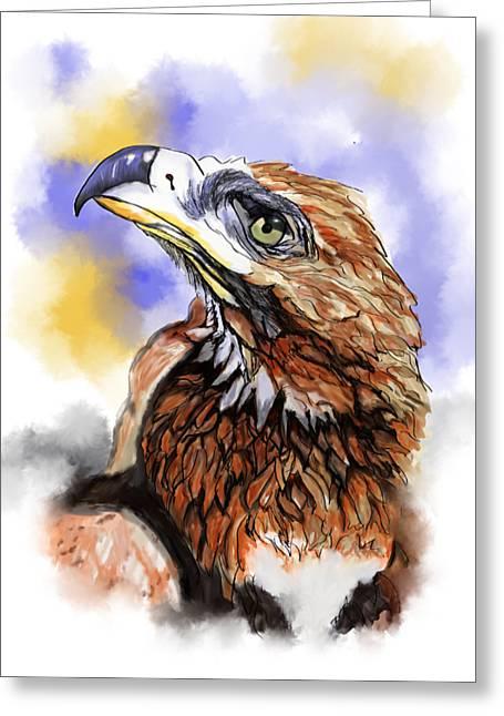 Wedgetailed Eagle Australian Bird Greeting Card