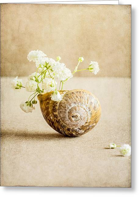 Wee Vase Greeting Card