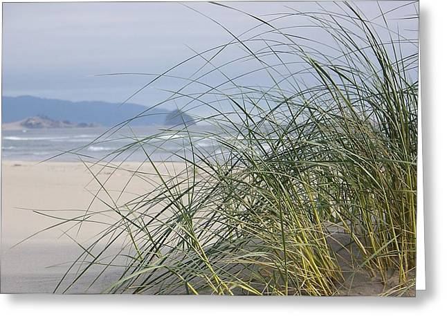 Weekend At The Beach Greeting Card by Angi Parks