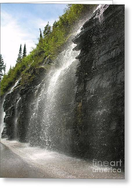 Weeping Wall Greeting Card by Diane Greco-Lesser