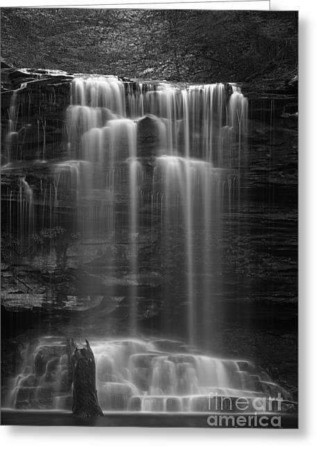 Weeping Wilderness Waterfall Black And White Greeting Card by John Stephens