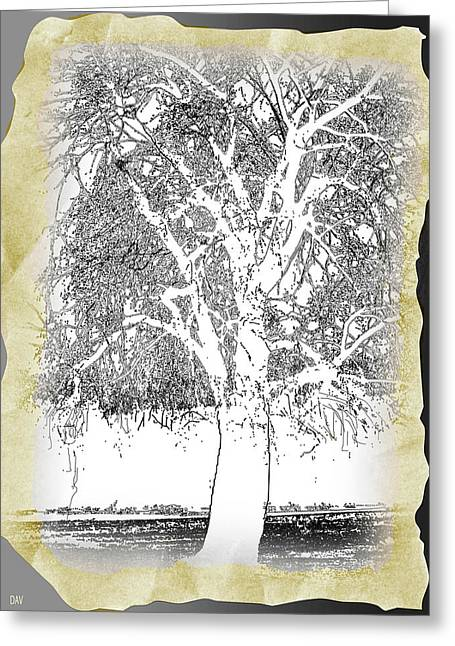 Weeping Mixed Media Greeting Cards - Weeping Willow Designer Greeting Card by Debra     Vatalaro
