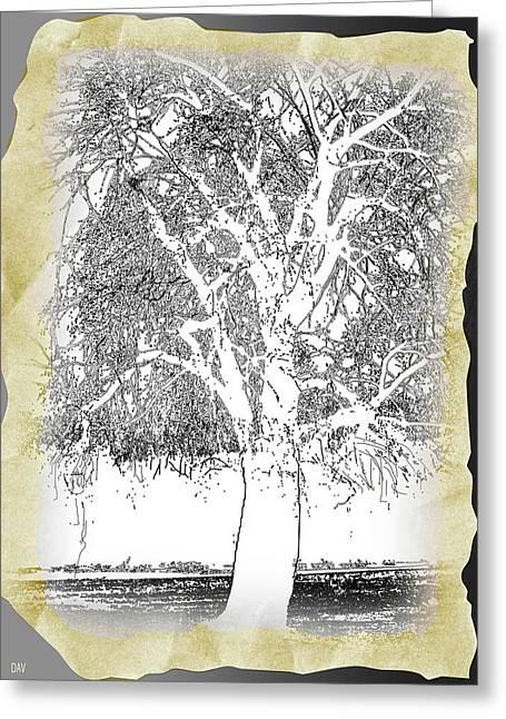 Weeping Willow Designer Greeting Card by Debra     Vatalaro