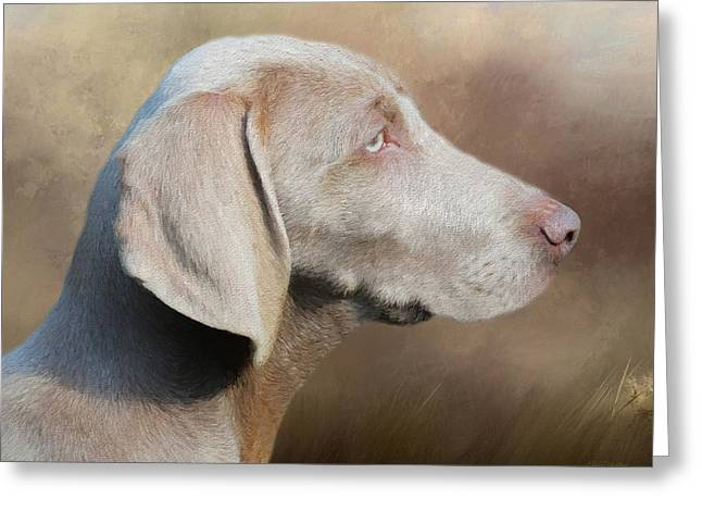 Weimaraner Adult - Painting Greeting Card
