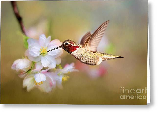 Welcome Spring Greeting Card by Darren Fisher
