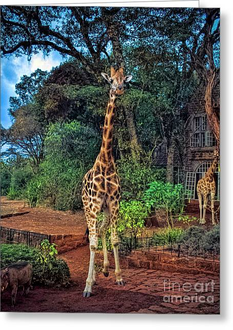 Welcome To Giraffe Manor Greeting Card