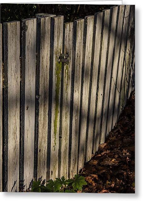 Greeting Card featuring the photograph Welcome To The Backyard by Odd Jeppesen