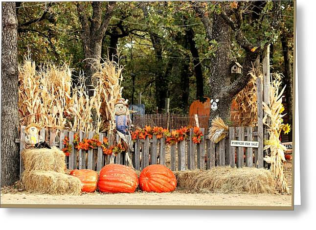 Greeting Card featuring the photograph Welcome To The Pumpkin Patch by Sheila Brown