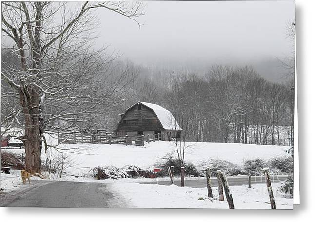 Welcome To Winter Greeting Card by Benanne Stiens