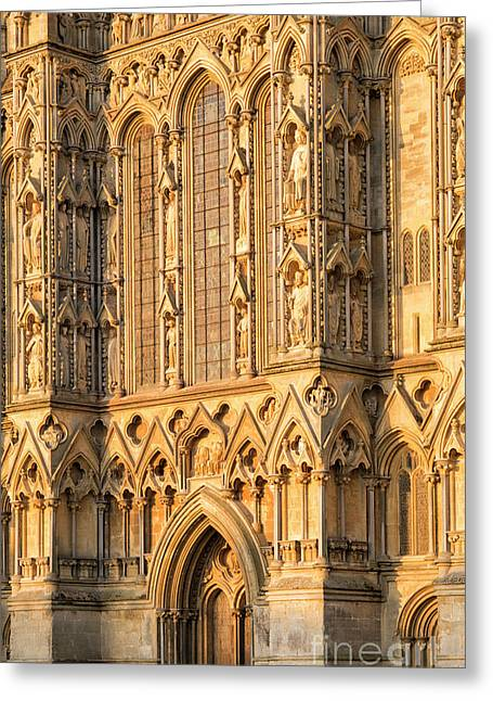 Wells Cathedral Golden Glow Greeting Card