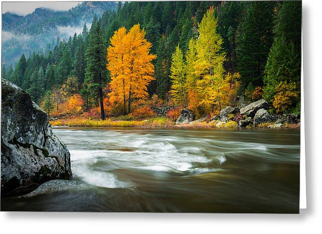 Greeting Card featuring the photograph Wenatchee Riverside by Dan Mihai