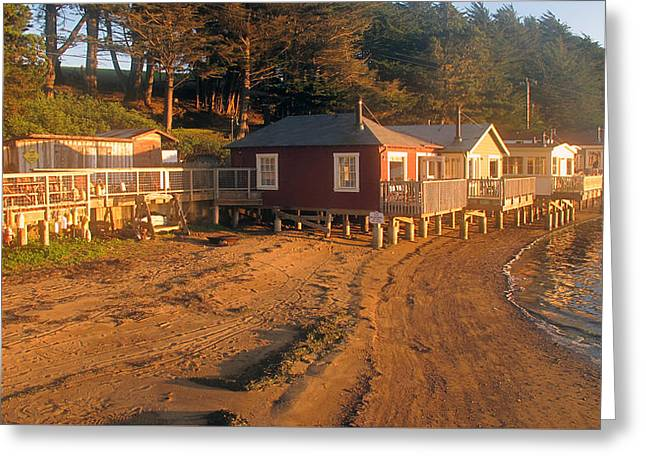 Greeting Card featuring the photograph West Marin Nick's Cove Cottages by Dianne Levy