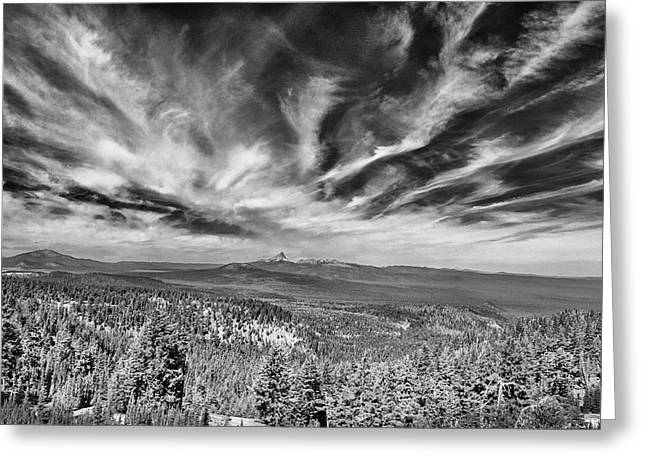 West Of Crater Lake B W Greeting Card by Frank Wilson