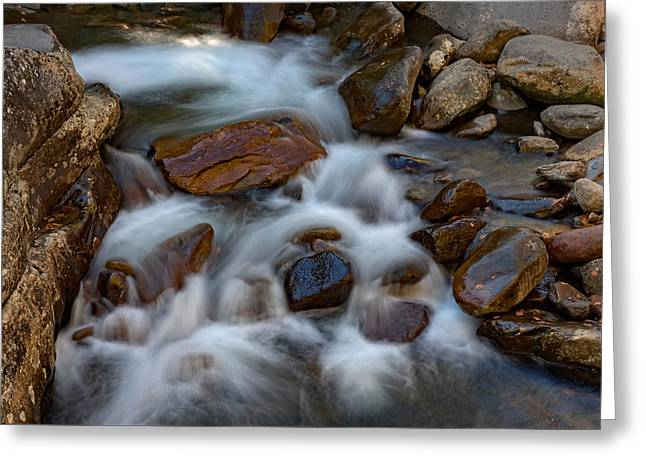 West Prong Little Pigeon River Greeting Card by Rick Berk