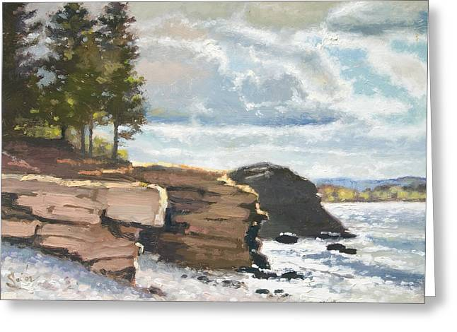 West Shores Presque Isle Greeting Card by Larry Seiler