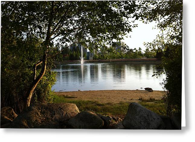 West View Of Lafarge Lake Greeting Card by Rod Jellison