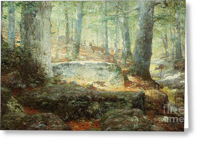 West Virginia Forest, 1905 Greeting Card