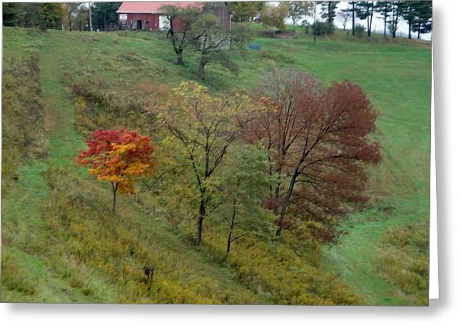 West Virginia Hillside Greeting Card by Terry  Wiley