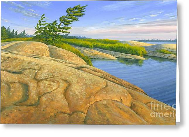 Wind Swept Greeting Card by Michael Swanson