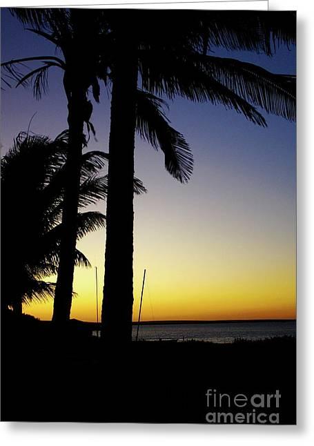 Western Aus Coast Greeting Card by Caroline Walker