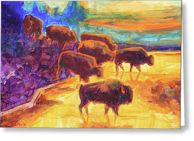 Western Buffalo Art Bison Creek Sunset Reflections Painting T Bertram Poole Greeting Card