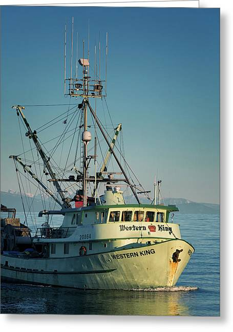 Greeting Card featuring the photograph Western King At Breakwater by Randy Hall