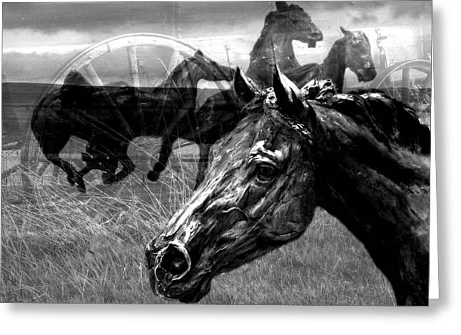 Western Montage Greeting Card