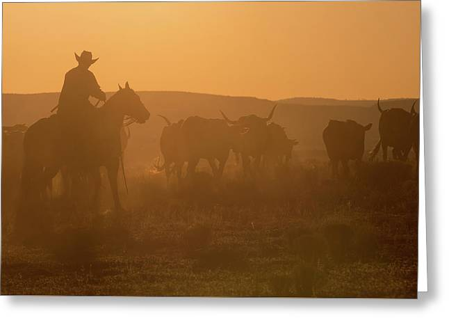 Western Roundup Number 1 Greeting Card by Steve Gadomski