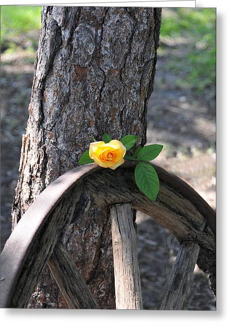 Western Yellow Rose Greeting Card
