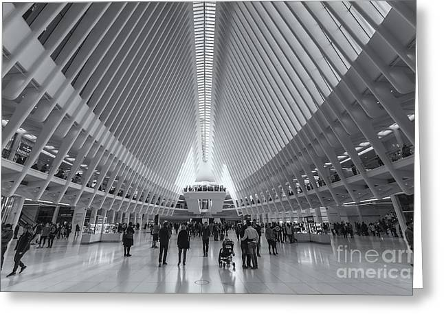Westfield World Trade Center Viii Greeting Card