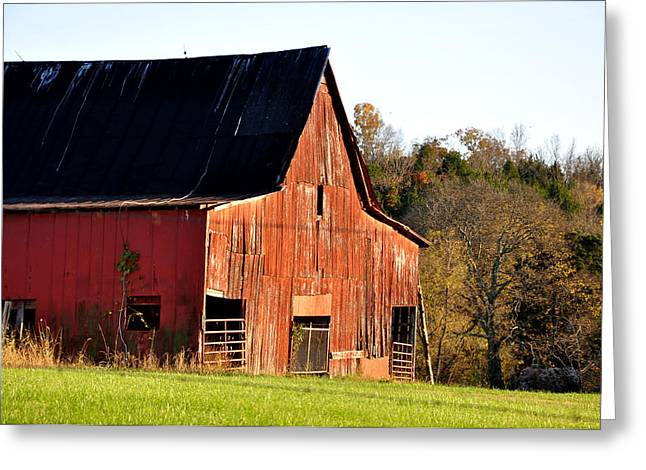 Westside Greeting Card by Jan Amiss Photography