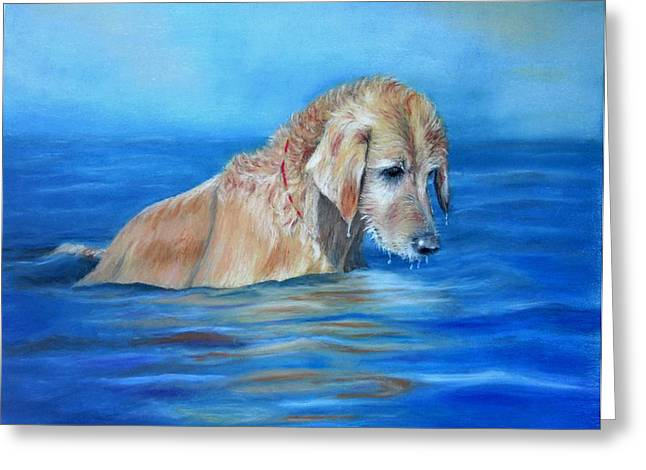 Wet Godden Retriever Greeting Card
