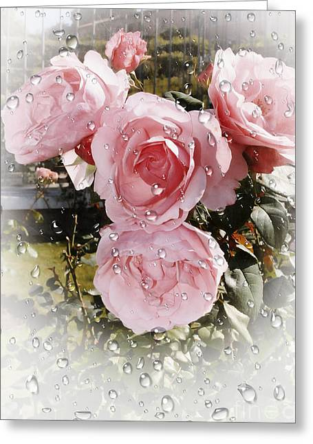 Wet Pink Roses Greeting Card