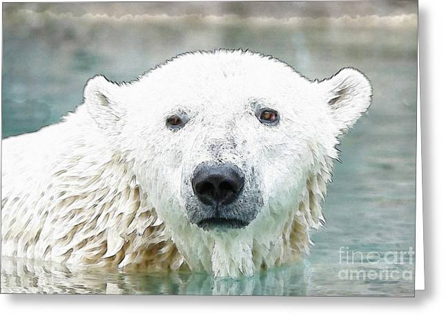 Wet Polar Bear Greeting Card