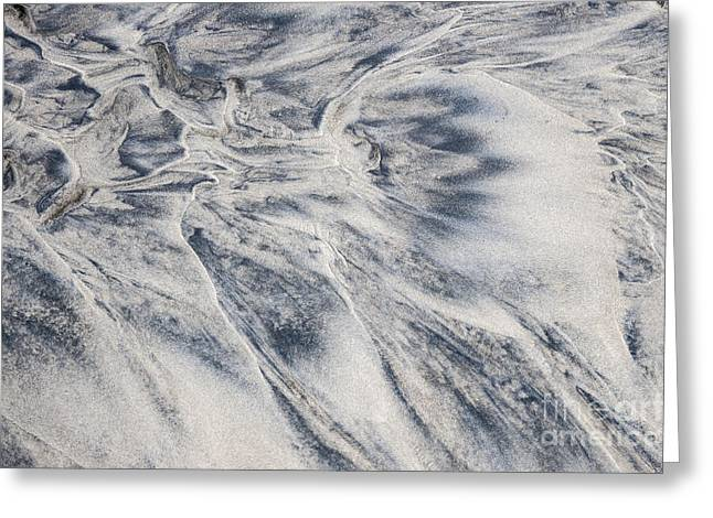 Wet Sand Abstract II Greeting Card by Elena Elisseeva