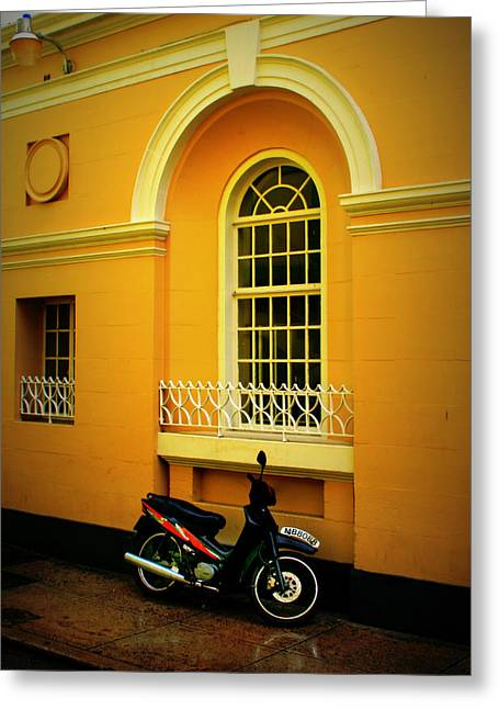 Gold Trim Greeting Cards - Wet Scooter Greeting Card by Perry Webster