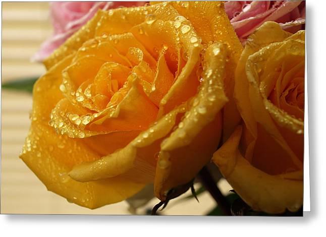 Wet Yellow Rose Greeting Card by Robert Gebbie