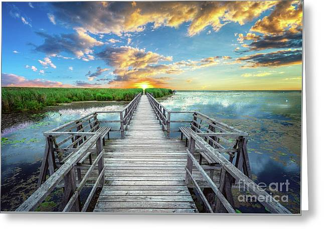 Wetland Marsh Sunrise Treasure Coast Florida Boardwalk A1 Greeting Card