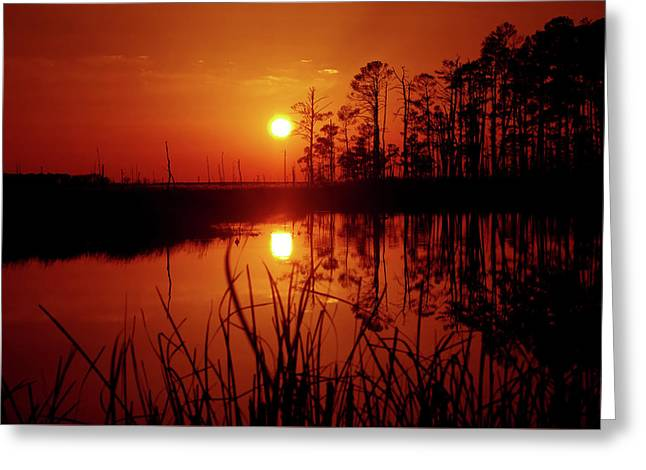 Greeting Card featuring the photograph Wetland Sunset by Robert Geary