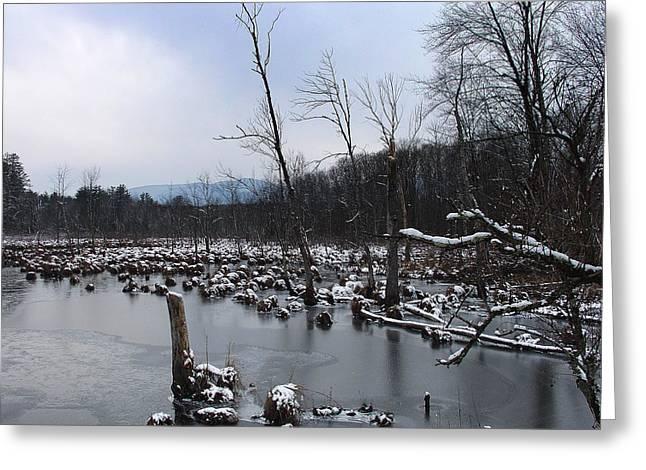 Wetlands Below High Peak As Winter Moves In Greeting Card by Terrance DePietro