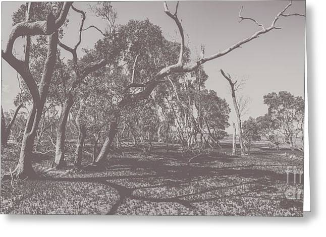 Wetlands Of Old Greeting Card by Jorgo Photography - Wall Art Gallery