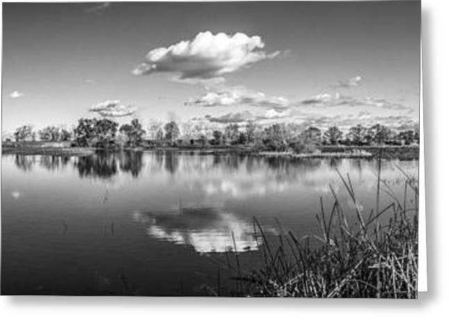 Wetlands Panorama Monochrome Greeting Card