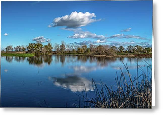 Wetlands Panorama  Greeting Card
