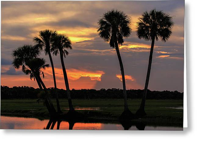 Wetlands Sunset Greeting Card