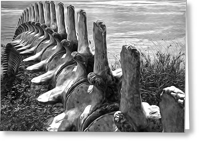 Whale Bones In Black And White Greeting Card
