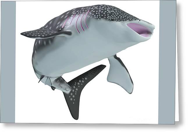Whale Shark Body Greeting Card