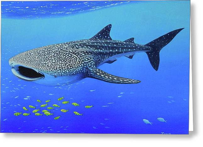 Whale Shark Greeting Card by James Zeger