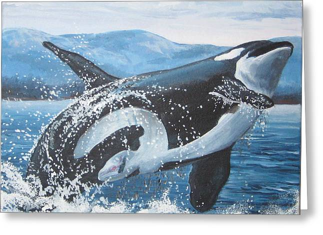 Whale Watching Greeting Card by May Moore