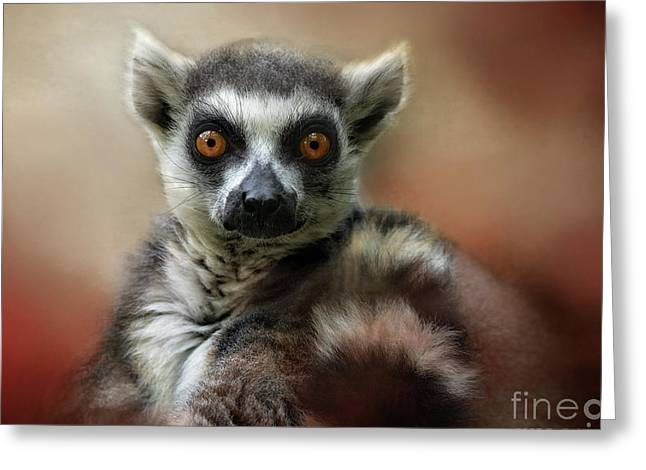 What Big Eyes You Have Greeting Card by Kathy Russell